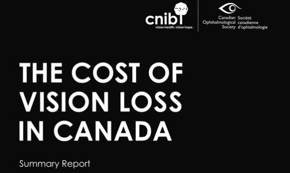 Cost of Vision Loss - Summary Report